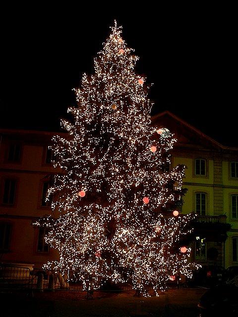 Le sapin de Noël à Neuchâtel